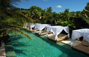 the elysian pool