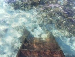 constance moofushi steps into lagoon