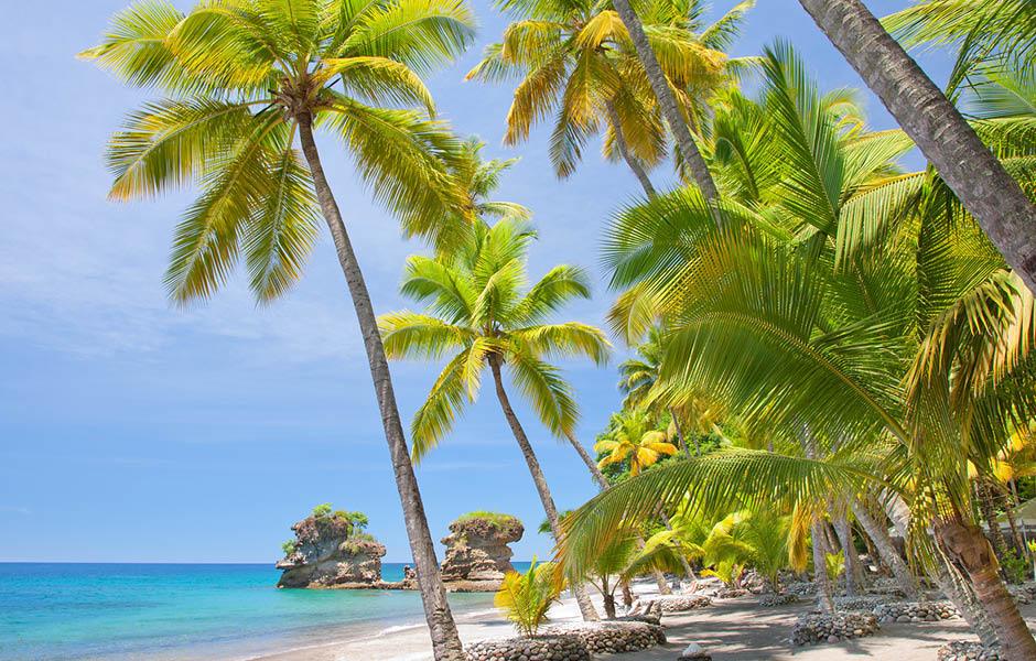 Anse Chastanet Anse Miamin Beach Carribean