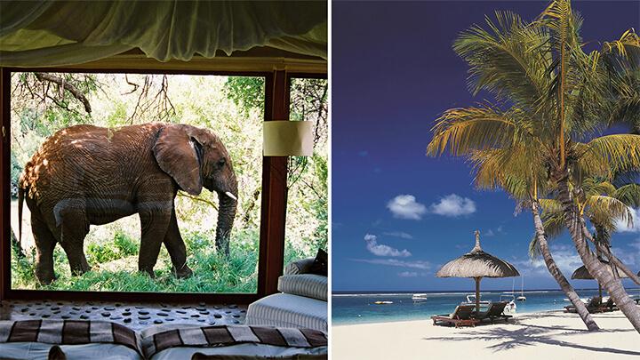 Safari beach